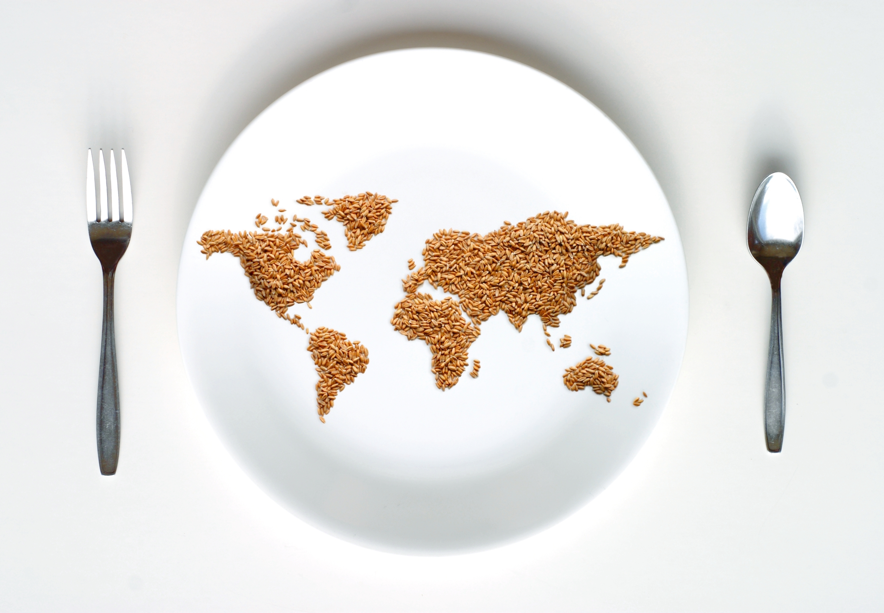 Together we can stop hunger world food program usa the global food supply consistently produces enough food to feed every single person in the world and yet nearly 1 billion people are undernourished and gumiabroncs Choice Image