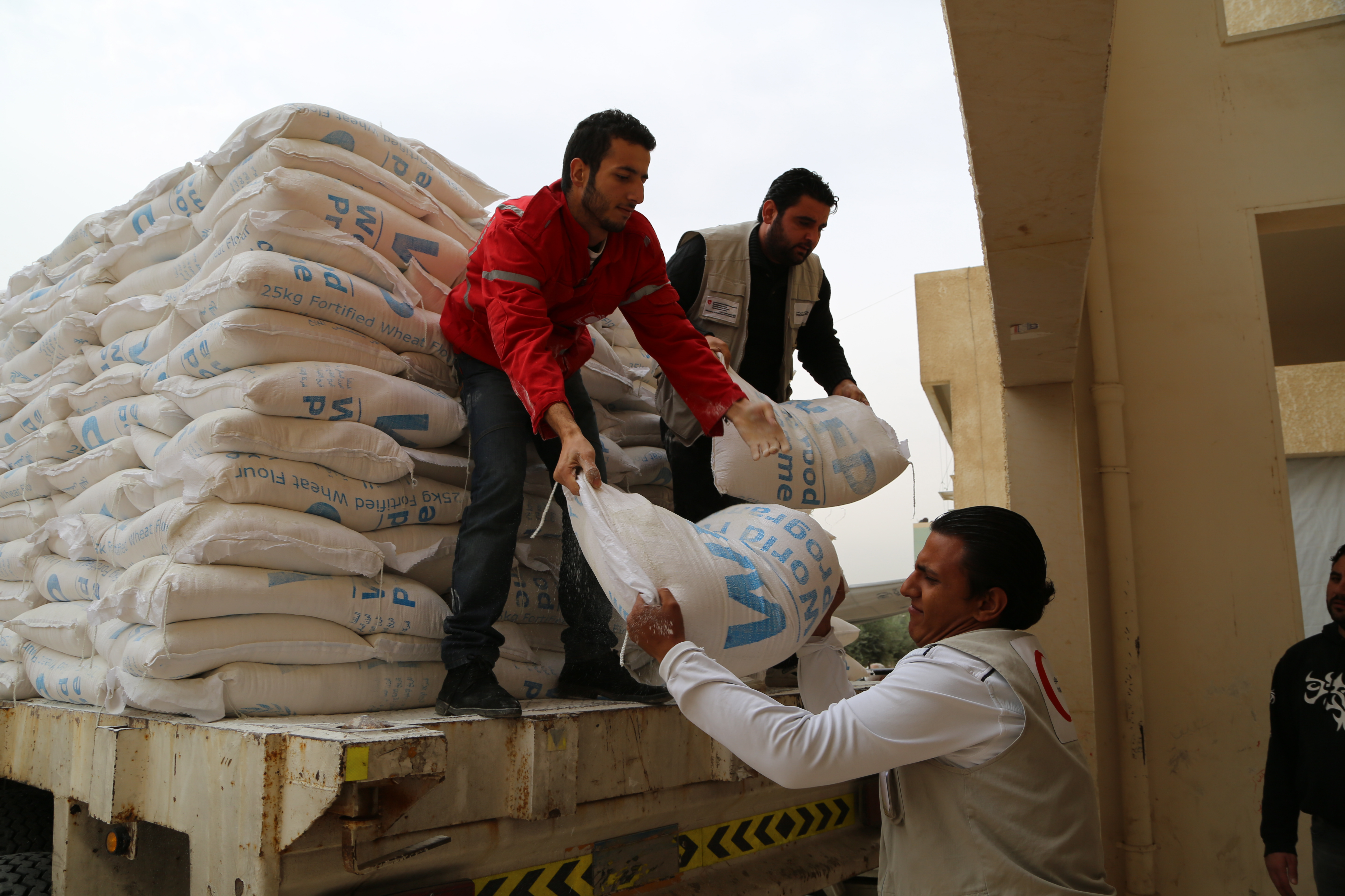 Volunteers pass along bags of WFP flour from the back of a truck