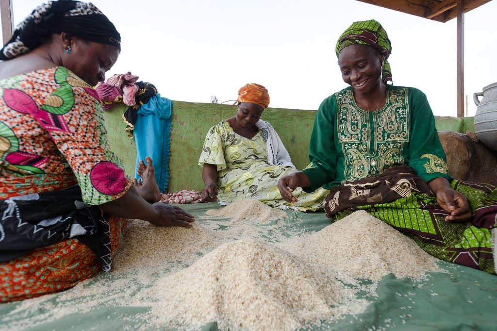 Memunatu Mumuni (left), Mari Ziblim and Abiba Murtapha clean rice at a World Food Programme project site in Nyankpala of Ghana.