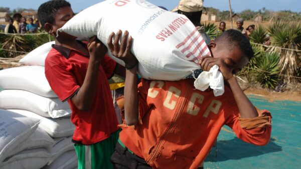 A man carries a bag of USAID-donated sorghum and beans in the village of Anjampaly