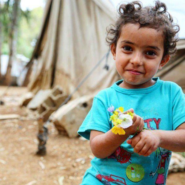 Detailed photograph of Rasha