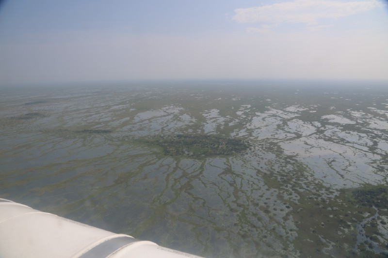 An aerial view of South Sudan's marshes in Unity State as seen from a WFP helicopter.