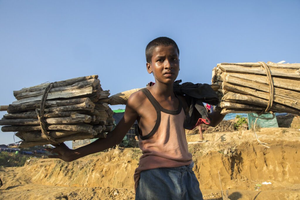 Ibrahim holds two bundles of firewood over his shoulders