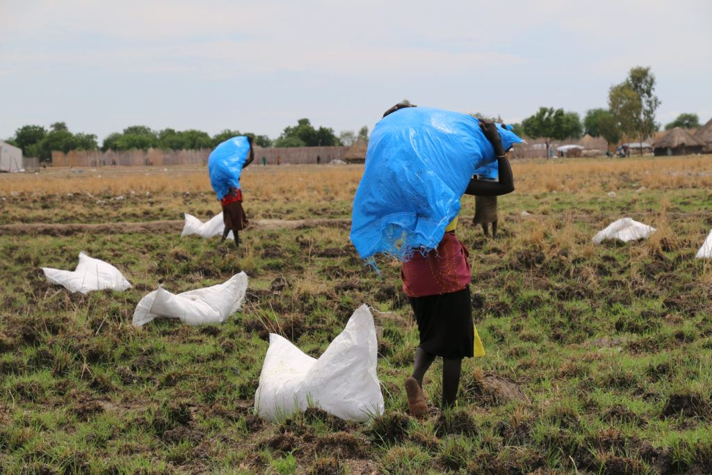 Porters move WFP rations after an airdrop of food assistance in Ganyiel, Unity State.