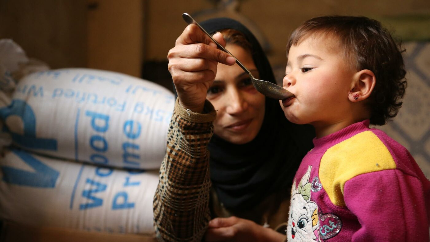 Image depicting WFP's Work