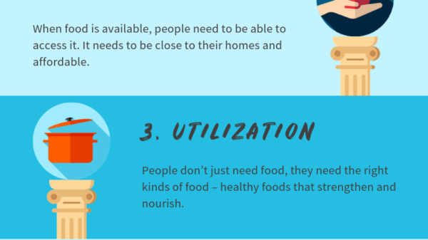 The 4 Pillars of Food Security