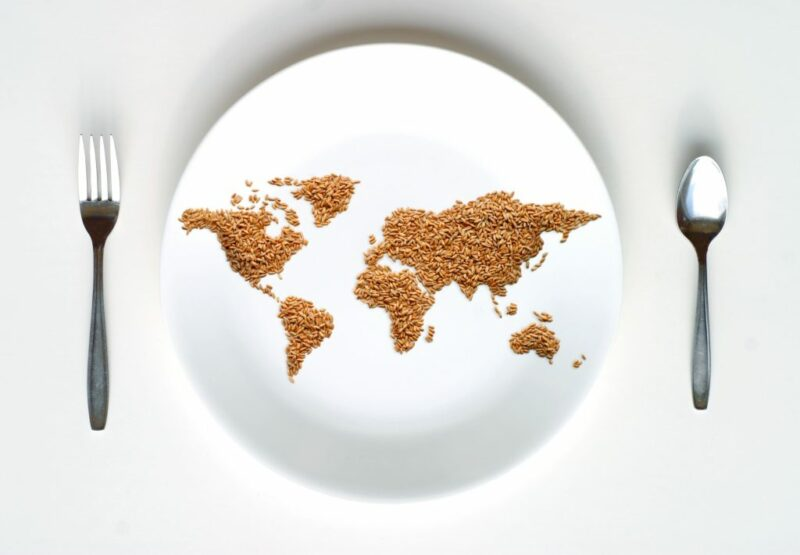 Detailed photograph of Food WFP Delivers