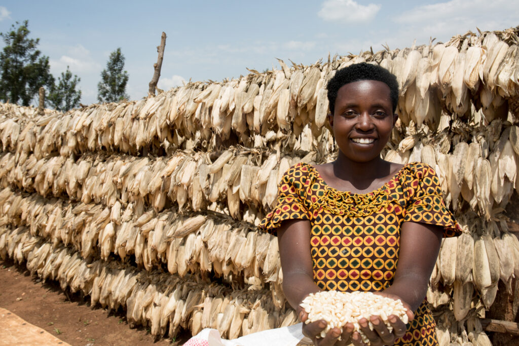 Placidia Nyirancuti, 29 years old, shows the maize that is ready to be shipped from the COMANYA cooperative.