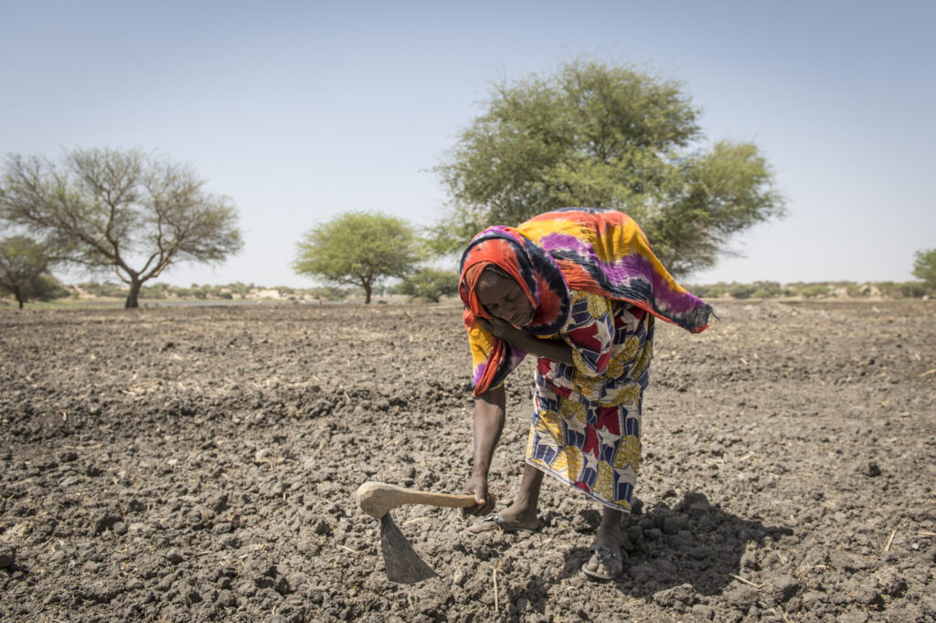 Bai Mbaram attempts to grow a garden in the dry soil around Lake Chad