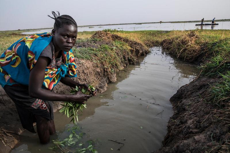 woman cleans vegetables in water