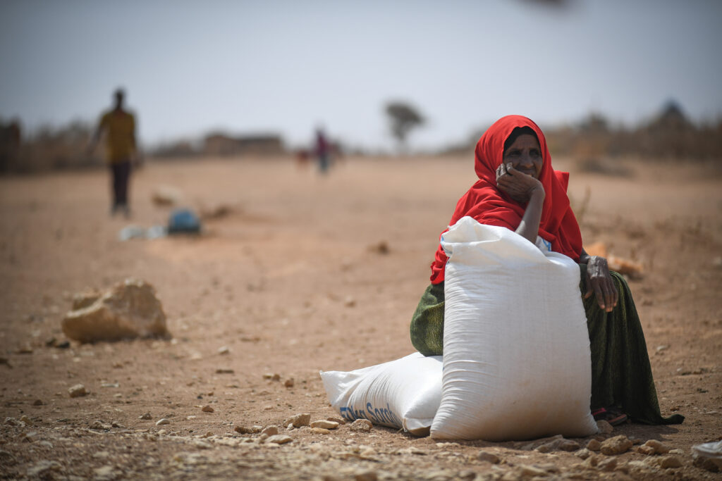 A woman sits in the middle of a dry landscape