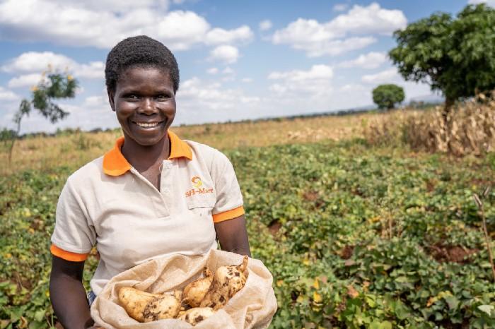 woman in malawi displaying sweet potatoes
