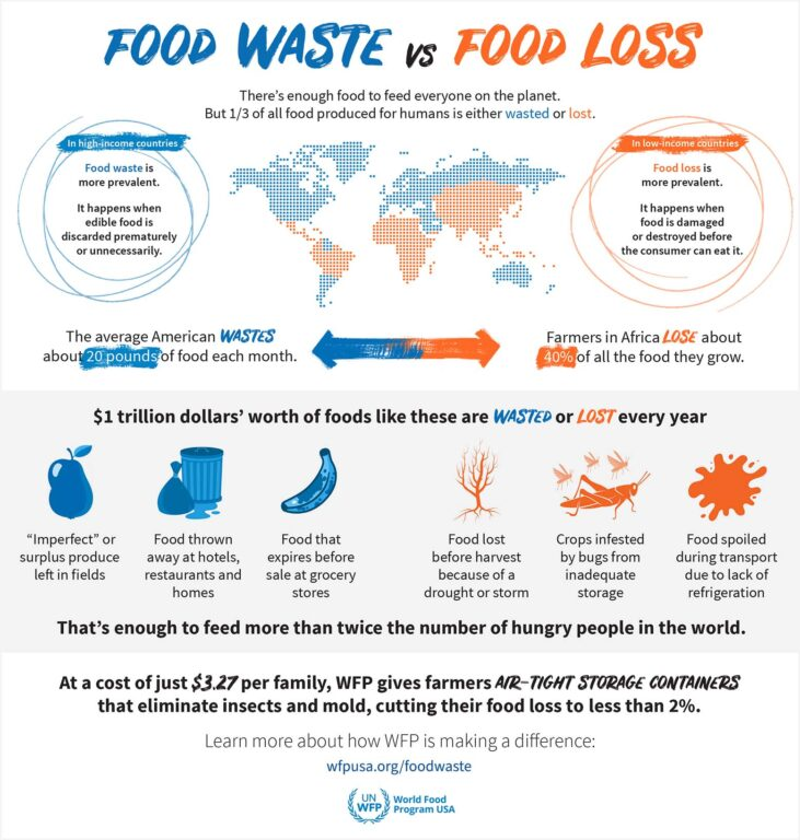 food waste vs loss graphic