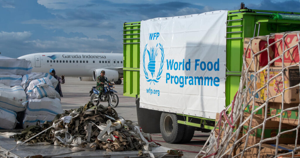 A WFP truck is parked in front of a plane, unloading supplies.