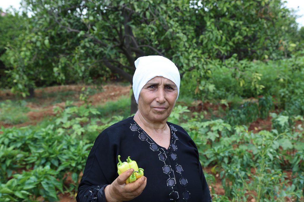 a woman holds a green pepper