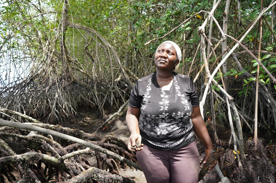 woman sits on tree in mangroves area