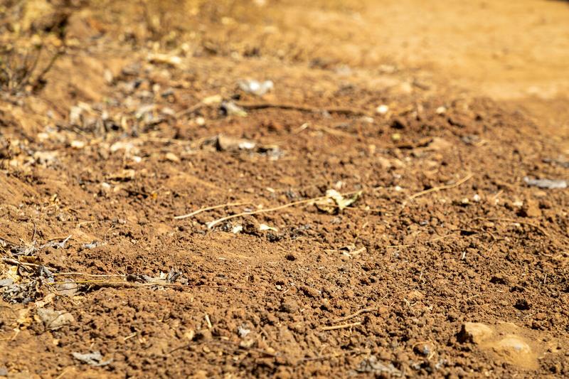dried up soil in farmland