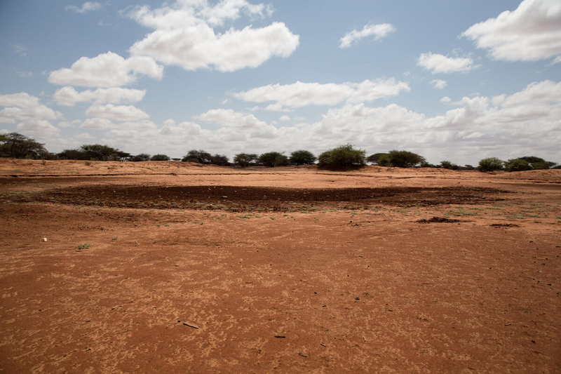Dry field in Somalia due to drought