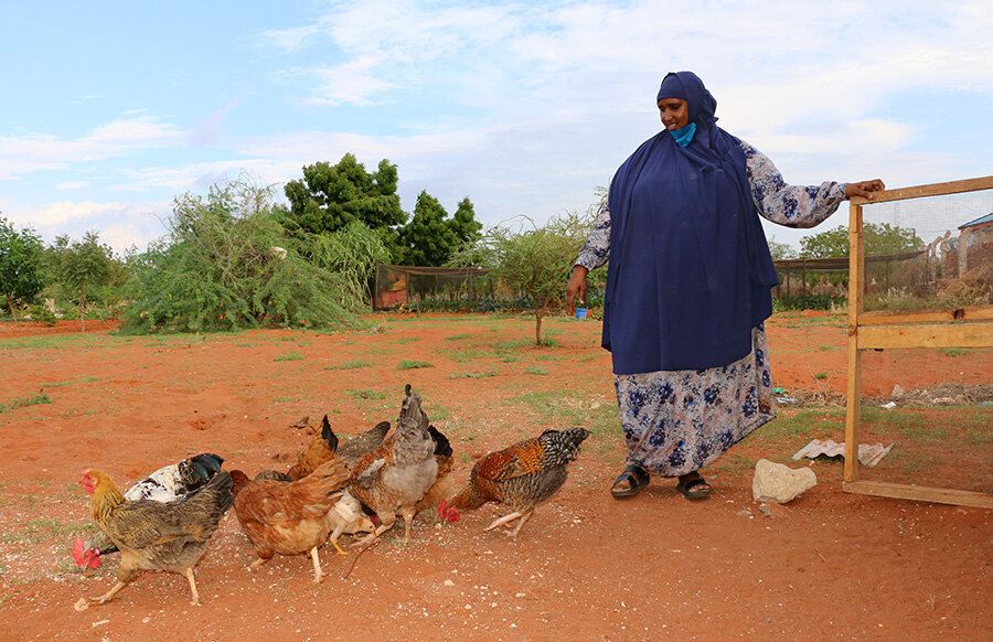 woman in blue headscarf with chickens on farm